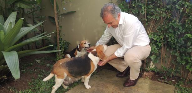 Duas cadelas da raça beagle que pertencem ao Instituto Royal ganharam o nome das filhas do deputado federal Ricardo Tripoli (PSDB-SP)