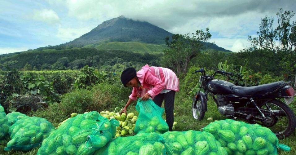 7.nov.213 - Uma mulher recolhe alimentos enquanto o vulcão Sinabung expele cinzas, em Karo, na Indonésia, nesta quinta-feira (7). Cerca de 1.600 pessoas precisaram deixar suas casas por causa da erupção