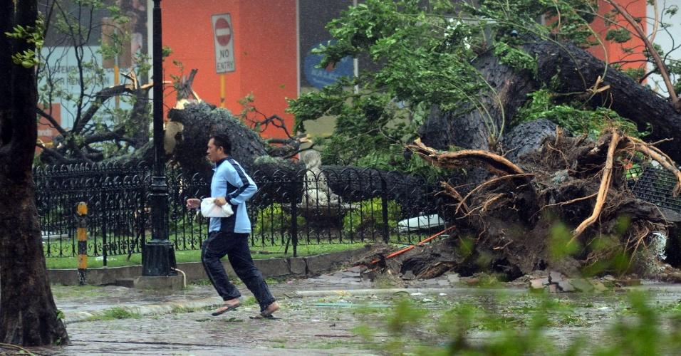8.nov.2013 - Homem caminha em rua com árvores derrubadas pelo tufão Haiyan nesta sexta-feira (8) na cidade de Cebu, nas Filipinas.