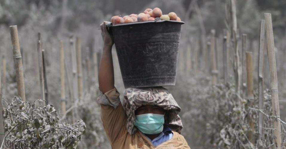 18.nov.2013 - Mulher carrega balde de tomates em Karo, na ilha indonésia de Sumatra, horas depois de nova erupção do vulcão Sinabung. Mais de 1.500 pessoas tiveram que ser evacuadas na Indonésia devido à erupção do Sinabung e do vulcão Merapi, em Java