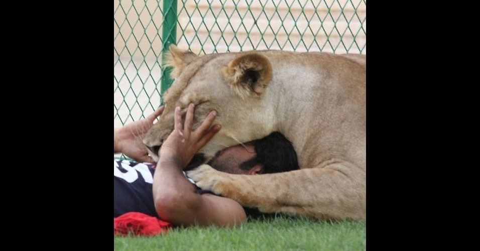 Humaid AlBuQaish é um jovem rico que se tornou celebridade no Instagram (http://instagram.com/humaidalbuqaish) postando fotos de seus leões e outros objetos caros, como veículos de luxo. Nas imagens, ele aparece nadando, brincando e até alimentando seus 'animais de estimação'. Tudo isso sem demonstrar nenhum medo