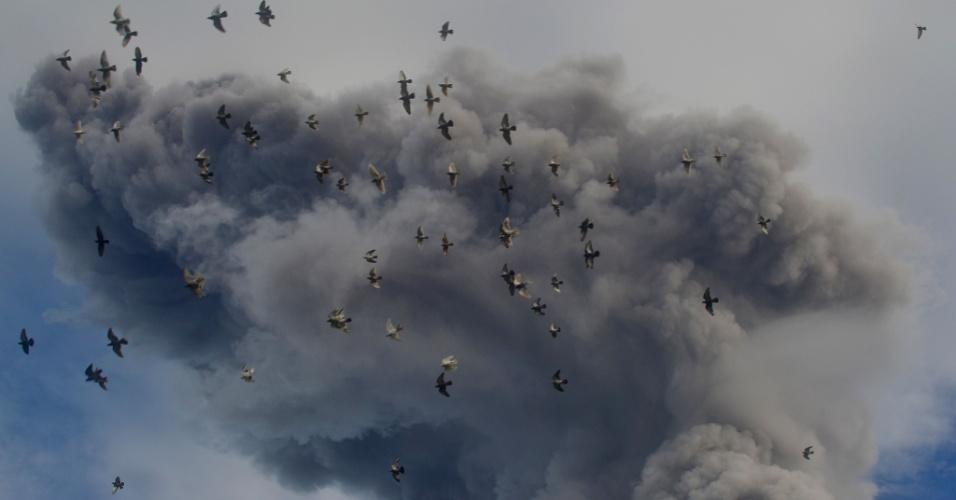 24.nov.2013 - Pássaros voam próximo a nuvem de cinzas expelidas pelo vulcão Sinabung neste domingo (24) em Karo, na Indonésia