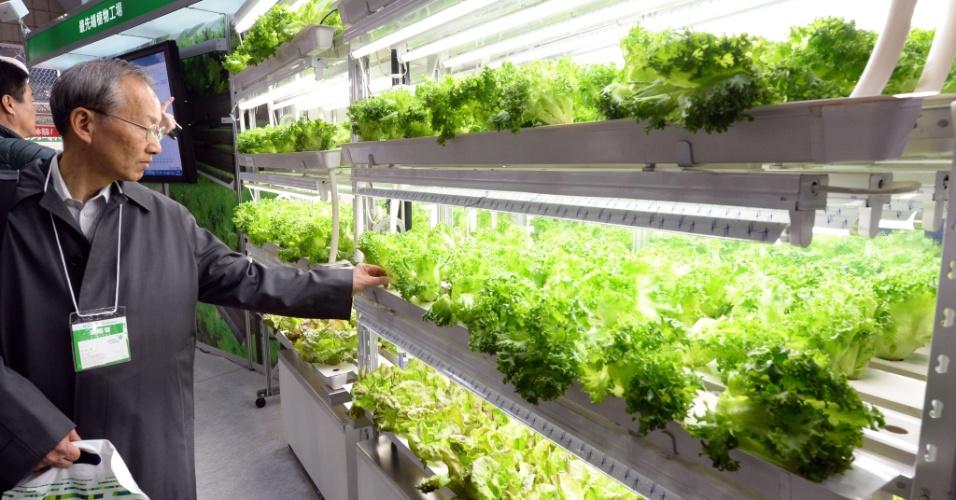 12.dez.2013 - Homem observa alface durante a feira Eco-Products 2013, nesta quinta-feira (12), em Tóquio. Mais de 700 empresas exibem produtos e soluções que reduzem o impacto ambiental do consumo