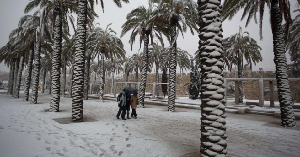 12.dez.2013 - Moradores de Jerusalém caminham sobre a neve e entre palmeiras, no lado de fora da Cidade Velha, nesta quinta-feira (12). A tempestade de neve fechou estradas e escolas no Oriente Médio