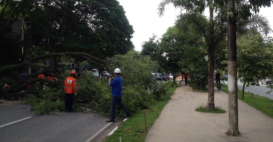 14.dez.2013 - Avenida Sumaré, na zona oeste de São Paulo, fica totalmente interditada por alguns minutos no sentido marginal Tietê, na manhã deste sábado (14), para a poda de uma árvore