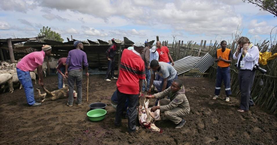 """14.dez.2013 - Moradores abatem cabras como parte de um ritual de iniciação """"Mgidi"""" em preparação à chegada do corpo de Nelson Mandela a Qunu, local de seu enterro"""