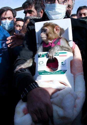 14.dez.2013 - O Irã afirmou neste sábado (14) que enviou um segundo macaco ao espaço e que o animal retornou à Terra com vida após um curto voo. Chamado Fargam, o macaco participou de uma viagem de 15 minutos e alcançou uma altitude de 120 quilômetros