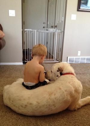 18.dez.2013 - Esse garotinho faz seu cão de estimação de banco quando sente vontade de sentar. O animal fica quietinho