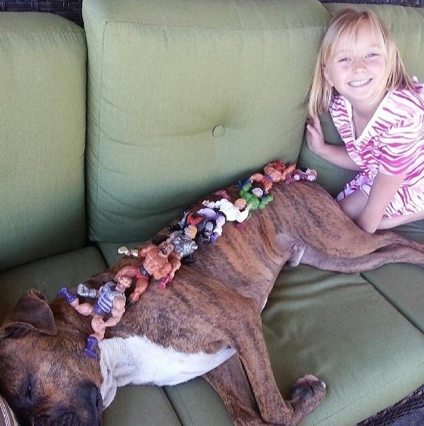 """18.dez.2013 - Menina faz do cachorro de estimação prateleira para """"guardar"""" seus bonecos enquanto brinca. Ele continua a sua soneca sem parecer se importar"""