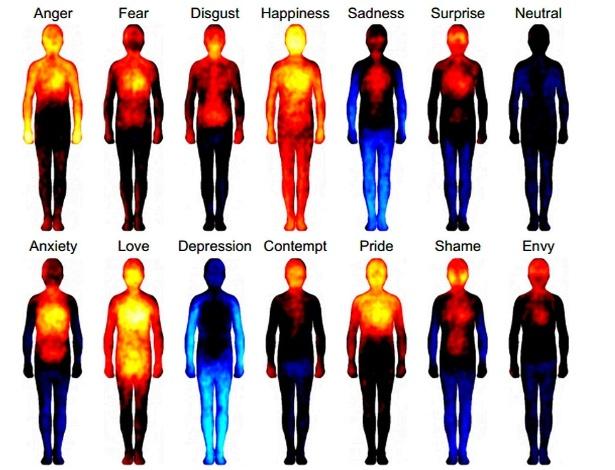 """O """"calor"""" das emoções em nosso corpo: acima, da esquerda para direita, raiva, medo, nojo,felicidade, tristeza, surpresa e neutralidade; abaixo, ansiedade, amor, depressão, desprezo, orgulho, vergonha e inveja"""