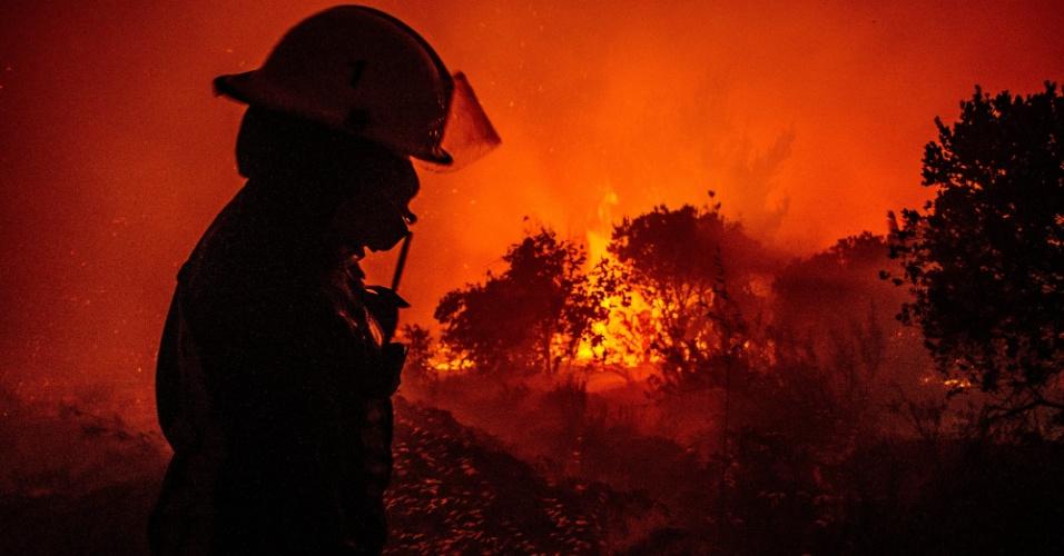 6.jan.2014 - Um bombeiro tenta controlar um incêndio florestal nesta segunda-feira (6) na cidade de Angol, a 600 km ao sul de Santiago, no Chile. Mais de 16 mil hectares foram consumidos pelas chamas em áreas do centro e do sul do pais, segundo Oficina Nacional de Emergência