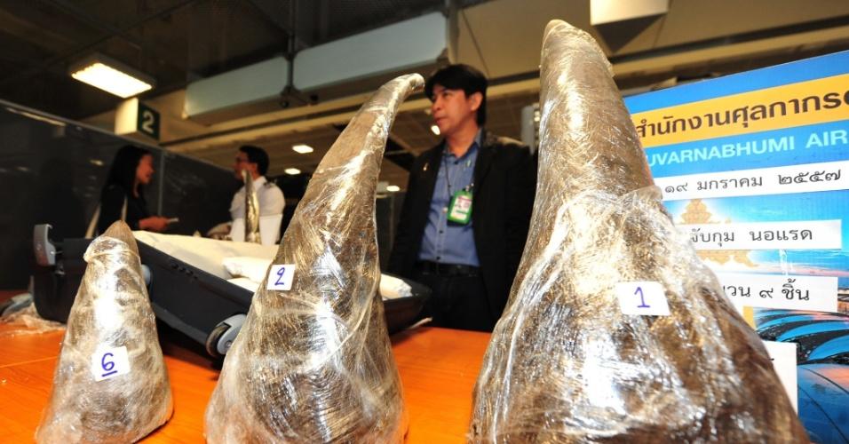 20.jan.2014 - Oficiais da aduana tailandesa apresentaram, nesta segunda-feira (20), chifres de rinoceronte apreendidos no Aeroporto de Suvarnabhumi, na capital do país, Bancoc. O comércio de chifres de rinoceronte é proibido, mas o contrabando é intenso no país devido à crença de que o chifre do animal tem propriedades mediciais