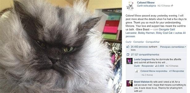 Post no Facebook anuncia morte de Colonel Meow, 2; gato tinha o pelo mais comprido do mundo