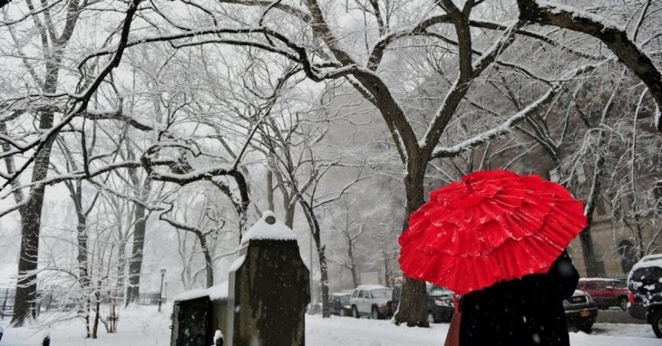 4.fev.2014 - Mulher caminha na Quinta Avenida em direção ao Central Park, em Nova York, nesta segunda-feira (3), quando a cidade foi atingida por uma tempestade de neve