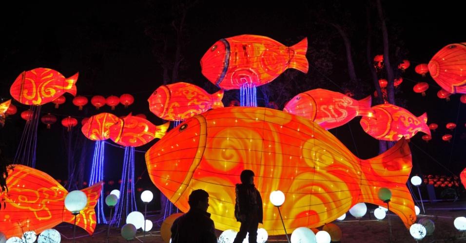 5.fev.2014 - Visitantes olham para iluminações em forma de peixe durante feira de lanternas em Changsha, capital da província de Hunnan, no centro da China, na terça-feira (4)