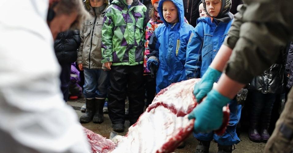 9.fev.2014 - Crianças assistem a dissecação de Marius, uma girafa macho, no zoológico de Copenhague, na Alemanha, neste domingo (9). O zoo recusou ofertas de outros zoológicos e 500 mil euros (cerca de US$ 680 mil), oferecidos por uma pessoa, para salvar a vida da girafa, que estava saudável. Como justificativa, o zoo disse que seguia recomendações para evitar a endogamia (acasalamentos entre parentes) feitas por uma associação europeia. O macho de nome Mário, tinha dois anos e sua carne alimentará os animais carnívoros do zoológico, disse o porta-voz Tobias Stenbaek Bro. Visitantes, incluindo crianças, foram convidados a assistir, enquanto a girafa era dissecada