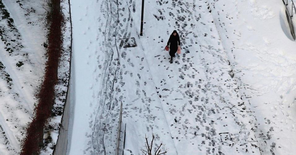 9.fev.2014 - Mulher caminha entre rua coberta de neve em Tóquio (Japão). A Agência Meteorológica do país disse que o acúmulo de neve chegou a 27 centímetros após a nevasca mais pesada desde fevereiro de 1994 atingir a capital japonesa. Foi a quarta maior queda de neve desde a Segunda Guerra Mundial, e a agência emitiu seu primeiro aviso forte de nevasca para o centro de Tóquio em 13 anos