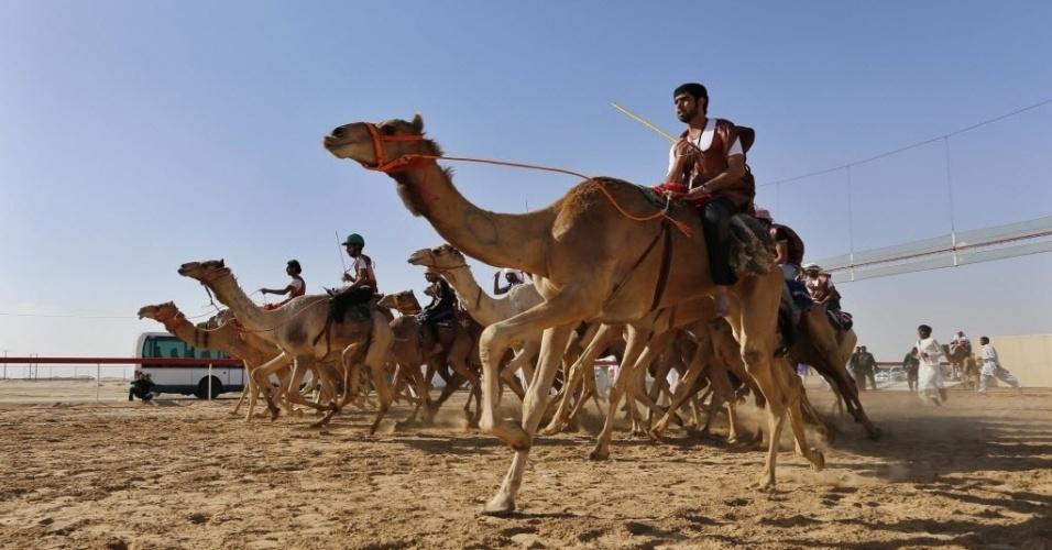 14.fev.2014 - Jockeys participam de corrida de camelos, nesta sexta-feira (14), organizada como parte do festival Bin Zayed Sultan Heritage, em Al Ainn, nos Emirados Árabes Unidos