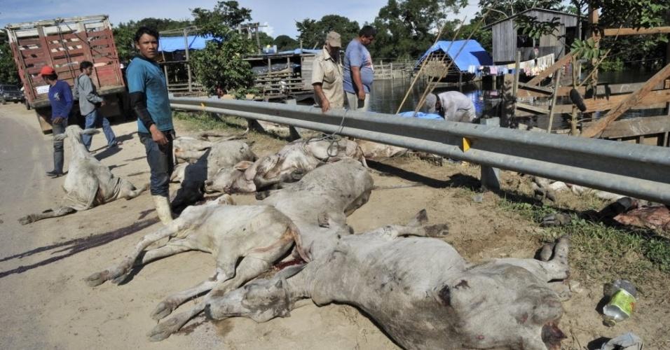 18.fev.2014 - Homens descarregam gado morto durante enchente do rio Mamoré, em Trinidad, na Bolívia