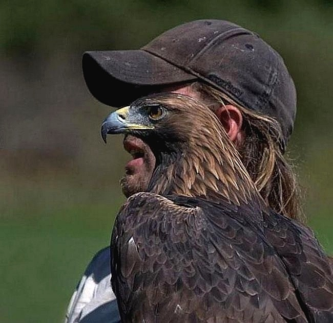 É um homem? É um pássaro? Não! É o homem-gavião