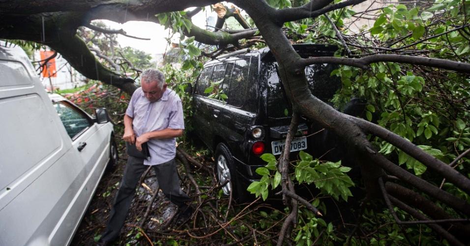 18.mar.2014 - Senhor de 70 anos deixa o carro após uma árvore cair sobre três veículos na rua Rui Barbosa, no bairro da Bela Vista, no centro de São Paulo, após forte chuva que atingiu a cidade nesta terça-feira (18). Segundo a Defesa Civil da cidade, ao menos 100 atendimentos foram feitos pelas equipes da prefeitura por causa das chuvas, que incluem 17 casos de quedas de árvore. Até as 19h47, havia 54 semáforos apagados e 11 em amarelo intermitente na cidade, totalizando 65 ocorrências ativas. De acordo com a CET (Companhia de Engenharia de Tráfego de São Paulo), os números estão dentro da média de um dia sem chuvas, quando são registradas, em média, de 65 a 70 ocorrências semafóricas. Partes do bairro da Pombeia, na zona oeste da capital paulista, ficaram sem energia elétrica por pelo menos quatro horas. Além disso, as fortes chuvas causaram colisões entre veículos em ruas alagadas e paralisação de trens da linha 8-Diamante CPTM (Companhia Paulista de Trens Metropolitanos)