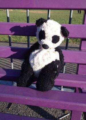 24.mar.2014 -  O panda ficou cabisbaixo ao ser esquecido por seu dono em um banco em Stafford, na Inglaterra
