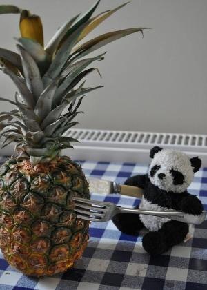 24.mar.2014 - O panda ficou tão ansioso para achar seu dono e voltar para casa que não resistiu e devorou um abacaxi enquanto aguardava novidades