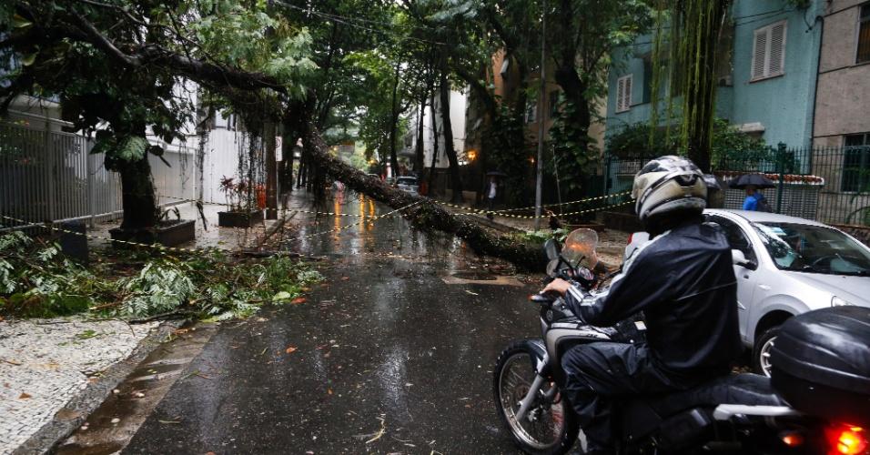 15.abr.2014 - A forte chuva que atingiu o Rio, nesta terça-feira (15), deixou árvores caídas na cidade. Parte de uma árvore impediu o trânsito na rua Almirante Guilhem, no Leblon, zona sul da capital fluminense
