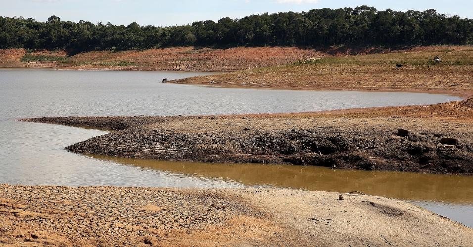 5.mai.2014 - O Sistema Cantareira, que abastece de água parte da Região Metropolitana de São Paulo, está com 10% de sua capacidade de reserva, segundo dados da Sabesp (Companhia de Saneamento Básico do Estado de São Paulo). É a primeira vez na história que o reservatório atinge um patamar tão baixo