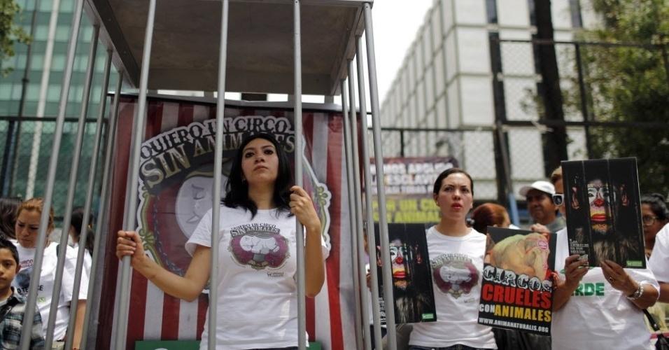27.mai.2014 - Ativista do grupo AnimaNaturalis entra em uma jaula para protestar, na Cidade do México, contra o Circo Ringling Brothers. Após denúncias de maus tratos a animais publicadas pela mídia local, o grupo fez um ato em frente à embaixada dos EUA no México nesta terça-feira (27)