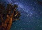 Esta noite tem chuva de meteoros Perseidas, e você poderá ver; saiba como - Reprodução/Kenneth Brandon