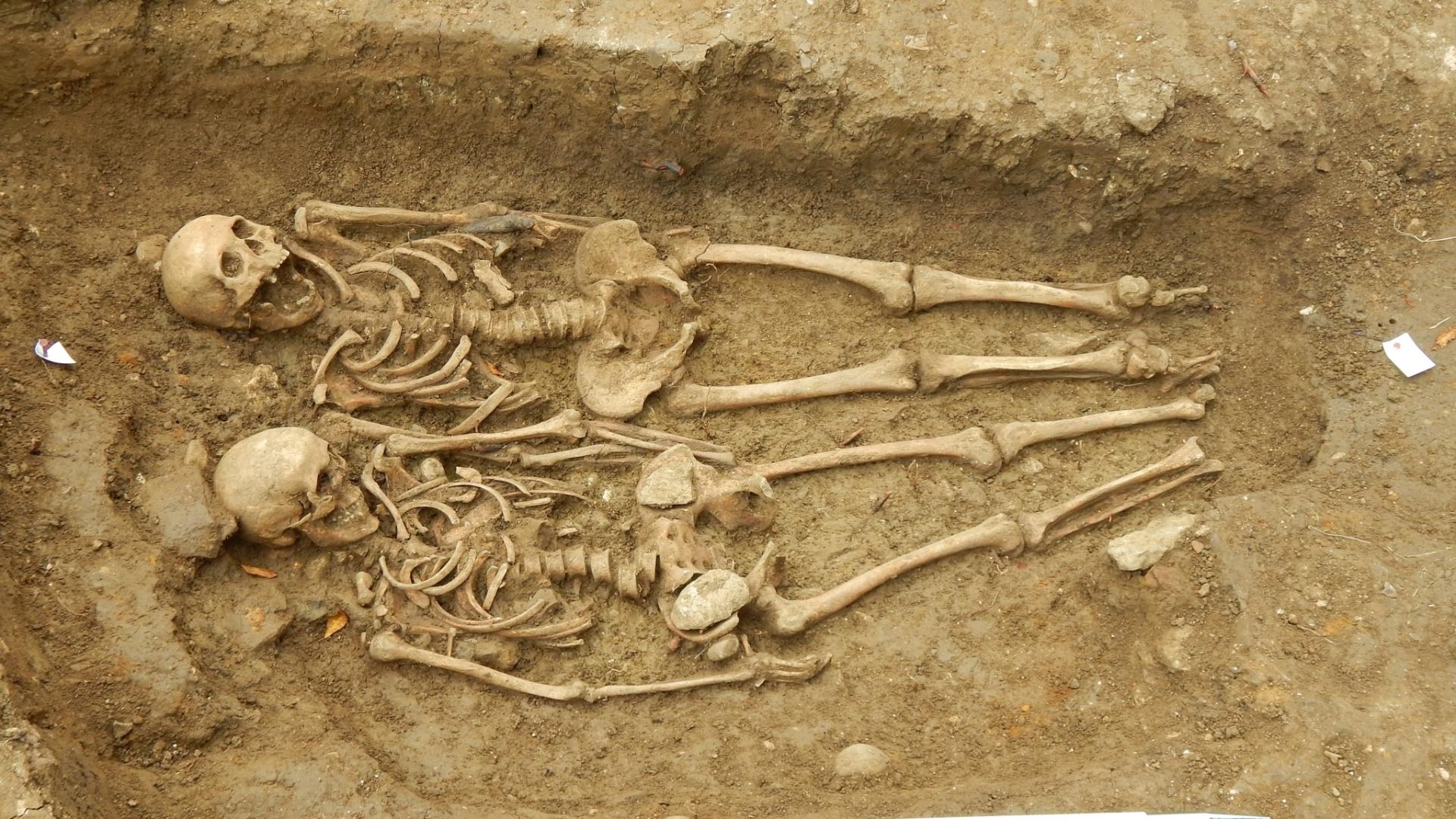 16.set.2014 - 16.set.2014 - O casal de esqueletos centenários foi encontrado na capela nomeada como St Morrell, um local de peregrinação na vila de Hallaton durante o século 14. Os ossos foram descobertos entre outros nove corpos do mesmo período. Entre eles o de um homem mais velho que foi morto por um instrumento pontiagudo, como um machado, na cabeça, possivelmente durante uma batalha. E de um jovem do sexo masculino que foi enterrado em uma cova com as pernas dobradas, de modo que encostassem em seu peito