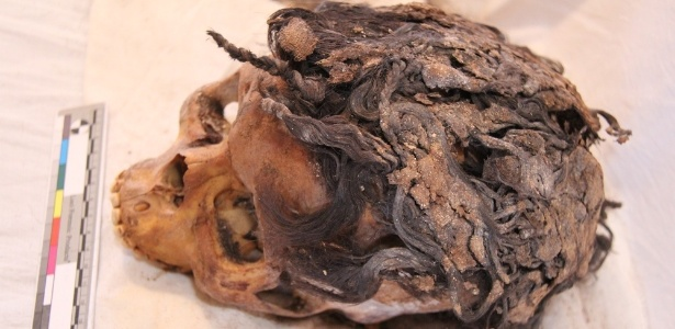 """Arqueólogos encontram esqueleto com """"megahair"""" intacto no Egito"""