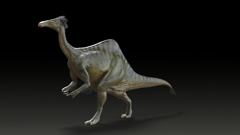 DINOSSAURO DE MÃOS ESTRANHAS - Deinocheirus mirificus, o maior membro do grupo conhecido como pássaros-dinossauros, é reconstituído nesta imagem divulgada nessa terça-feira (21). Cientistas afirmaram que dois esqueletos quase completos do animal de 70 milhões de anos mostraram que ele ostentava uma combinação de características pouco ortodoxas, nunca antes vistas em um dinossauro