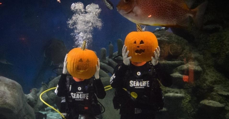 27.out.2014 - Mergulhadores mostram suas esculturas de abóbora em um evento para marcar a chegada do Halloween, no centro de Londres, Inglaterra