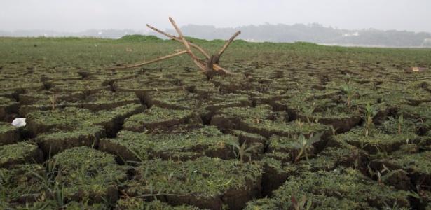 Vegetação cresce em áreas antes cobertas pelas águas da represa Guarapiranga, na zona sul de São Paulo