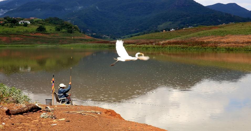 24.nov.2014 - Garça sobrevoa local onde homem pesca na represa Jaguari-Jacareí, que integra o Sistema Cantareia, na cidade de Vargem, no interior de São Paulo. Nesta segunda-feira (24), o reservatório está com apenas 9,4% da sua capacidade