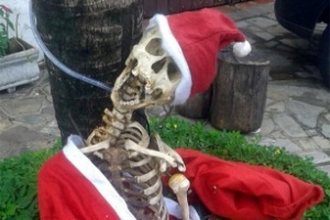 Esqueleto vestido com roupa de Papai Noel em casa de Itu (SP)