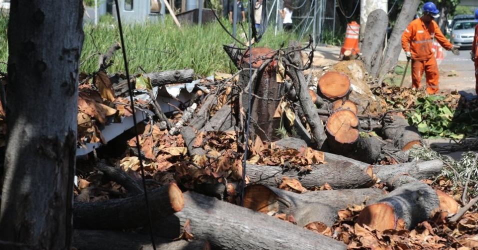 Funcionários da prefeitura paulistana juntam troncos e galhos de árvore caída durante tempestade neste início de 2015