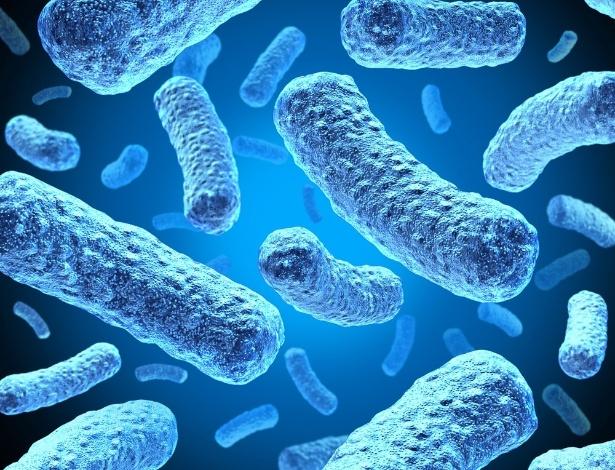 Micróbios infestam nosso corpo: mas sem eles, ninguém é tão humano