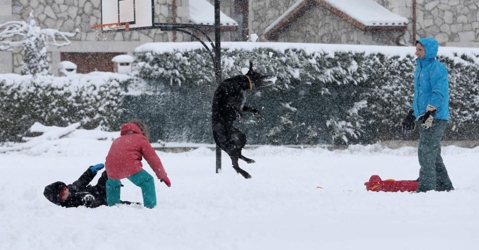 22.jan.2015 - Cachorro brinca com seus donos na neve, após uma forte nevasca em Burgos, no norte da Espanha
