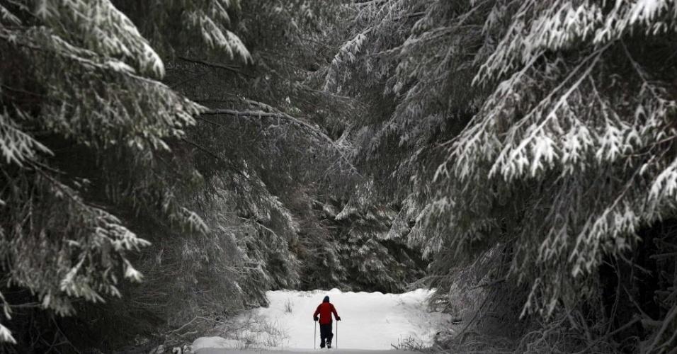 29.jan.2015 - Um homem caminha entre árvores cobertas de neve perto da aldeia de Cargan, no norte do Reino Unido, após nevascas fortes que fecharam mais 200 escolas nesta quinta-feira na Inglaterra e na Irlanda do Norte