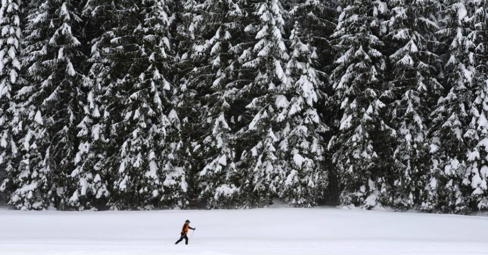 29.jan.2015 - Um homem esquia ao lado de árvores cobertas de neve perto da pequena aldeia de Kaltenbrunn, na região de Garmisch-Partenkirchen, no sul da Alemanha. No norte do Reino Unido, nevascas fortes fecharam mais 200 escolas nesta quinta-feira