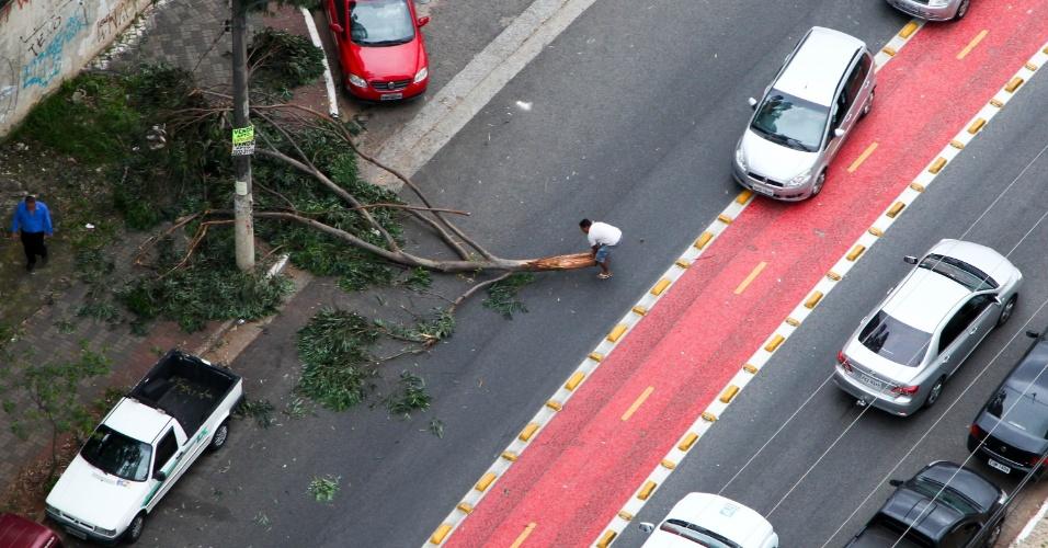 30.jan.2015 - Homem tenta arrastar galho de árvore que interrompe a passagem de carros na altura do número 2000 da avenida Ministro Petrônio Portela, na zona norte da capital paulista, nesta sexta-feira