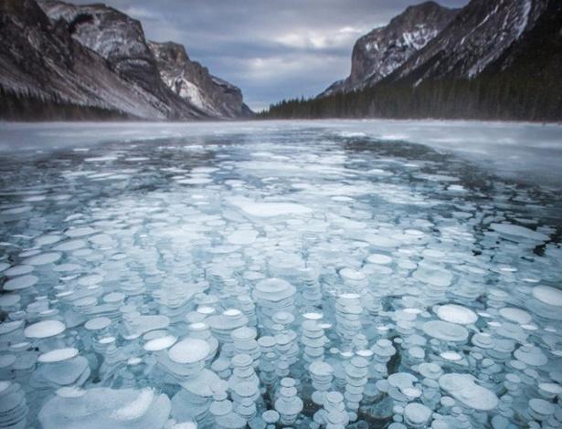 image gallery lagos congelados