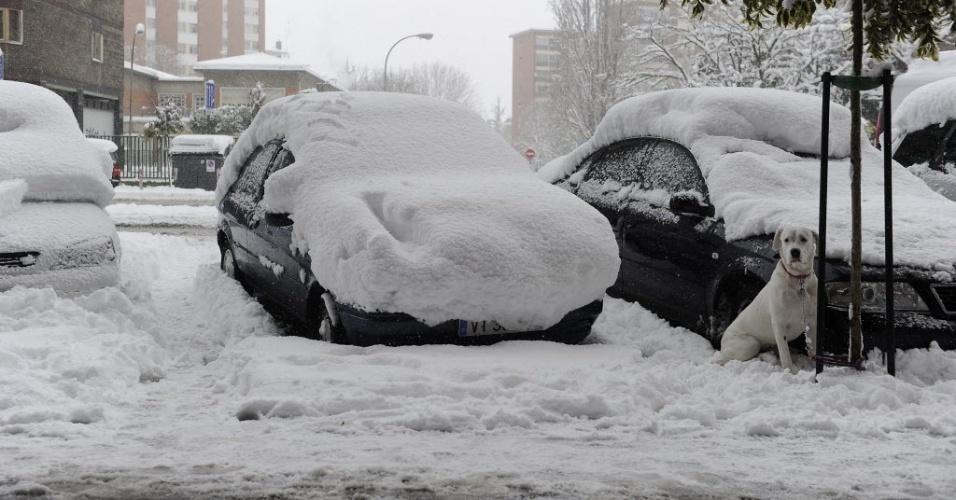 5.fev.2015 - Nevasca cobre veículos na cidade de Vitoria-Gasteiz, na Espanha, nesta quinta-feira (5)