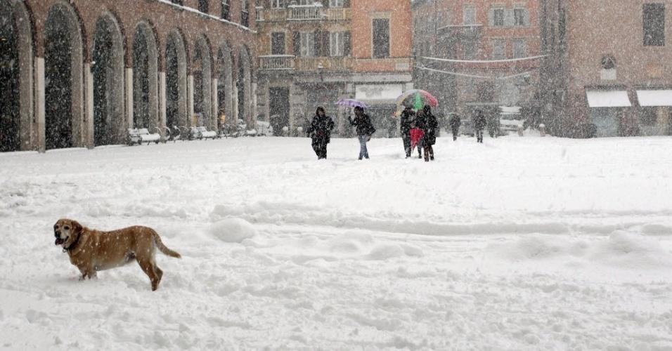 6.fev.2015 - Neve cobre praça na cidade de Modena, no norte da Itália, nesta sexta-feira (6). O norte do país tem sofrido com nevascas e fortes temporais