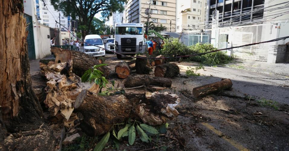 11.fev.2015 - Árvore cai na alameda Lorena, na região do bairro de Jardim Paulista, na zona oeste de São Paulo, nesta quarta-feira (11) após fortes tempestade que caiu sobre a cidade na noite de ontem