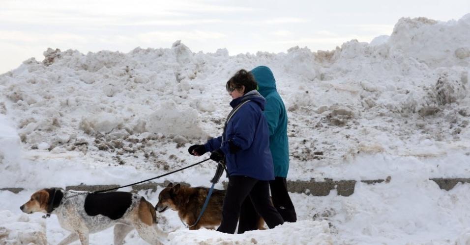 14.fev.2015 - Mulheres andam com cães na praia de Revere, Massachusetts, EUA. A região de New England (que compreende os Estados norte-americanos de Connecticut, Maine, Massachusetts, New Hampshire, Rhode Island e Vermont) está esperando a quarta grande tempestade de neve em três semanas e ventos fortes. A tormenta vai durar da noite de sábado à manhã de domingo