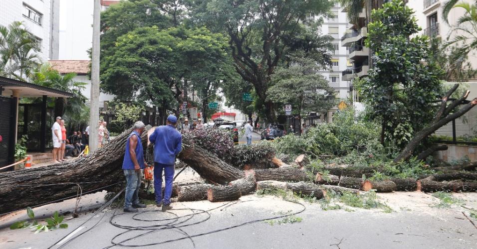 17.fev.2015 - Funcionários trabalham nesta terça-feira (17) para retirar uma árvore que caiu na rua Sergipe, em Higienópolis, região central de São Paulo, após o temporal que atingiu a cidade da tarde dessa segunda (16). A via foi interditada na altura do número 271. Segundo estudo da prefeitura, desde o início do verão, cerca de 1.800 árvores já caíram na capital. Do total, 63% estavam saudáveis